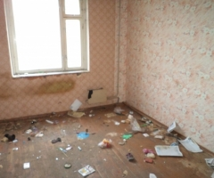 Помогите уничтожить клопов, тараканов, слизней и грызунов в сиротском помещении!