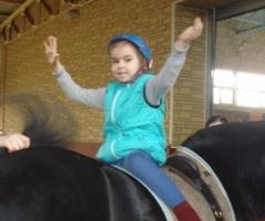 Помогите на иппотерапию детям-инвалидам из центра 'Радуга' г.о.Жуковский!