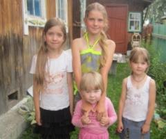 Поможем многдетной семье Матиных из Томской области купить двухъярусную кровать!