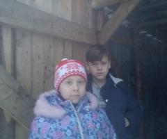 Просим помочь нам приобрести дрова! Котегова С.В., 4 детей