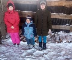 Молю вас о помощи в приобретении дров! Галай А. А., многодетная, 4 детей.