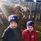 Спасибо от многодетной семьи Боровских за корову!